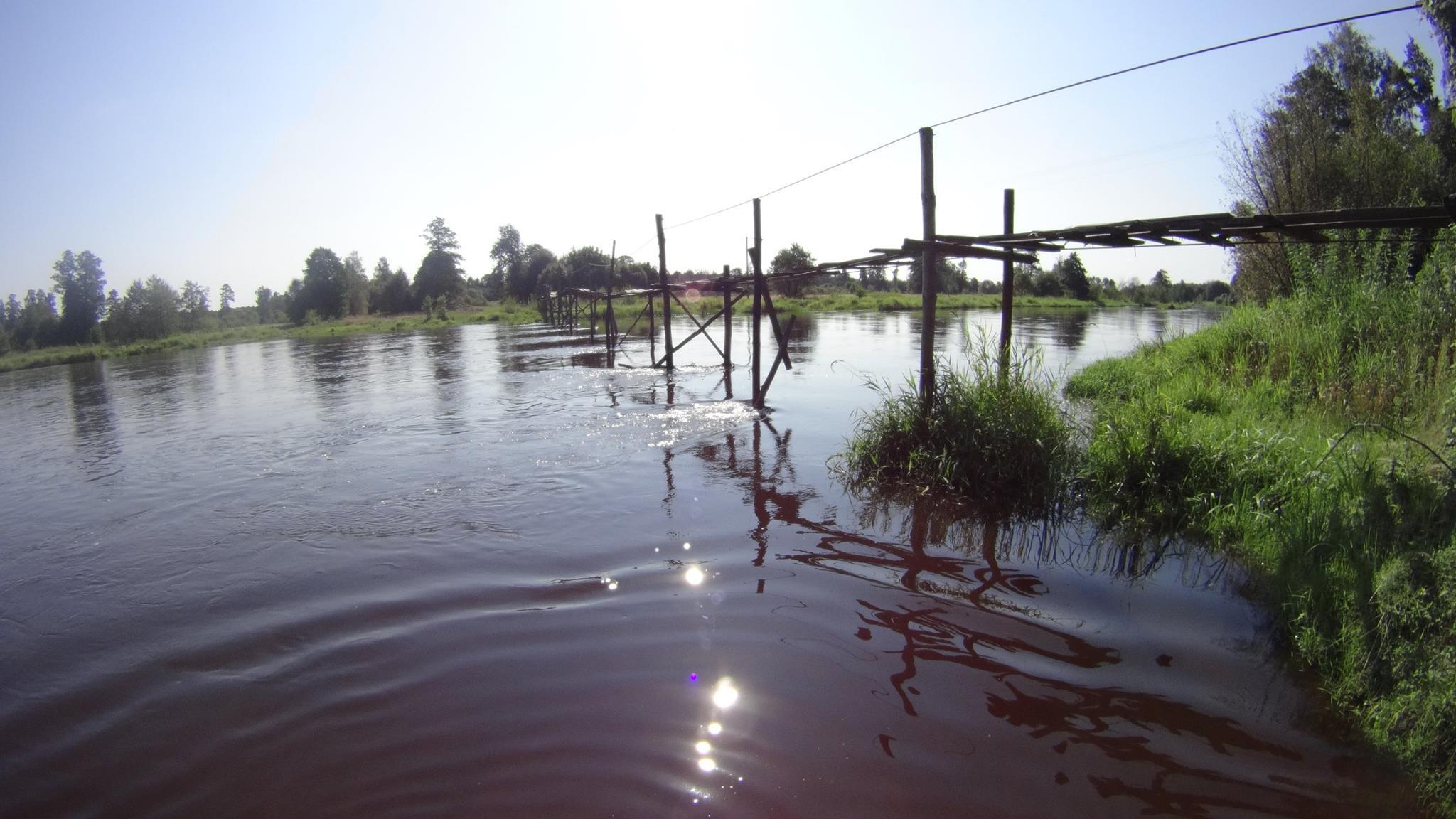 spływy kajakowe Przedbórz